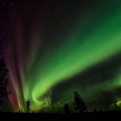 aurore-boreale-laponie-suede