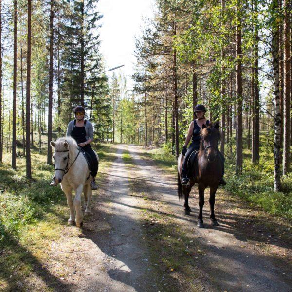 balade à cheval, Laponie Suédoise