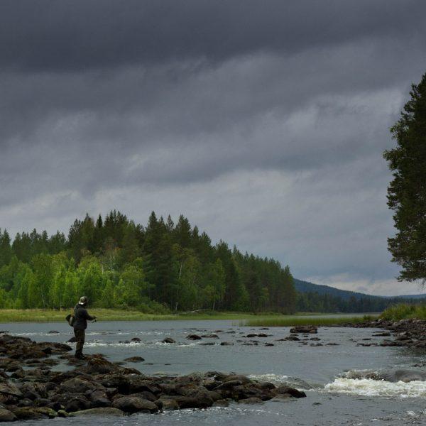 pêche en rivière en Laponie, Suède