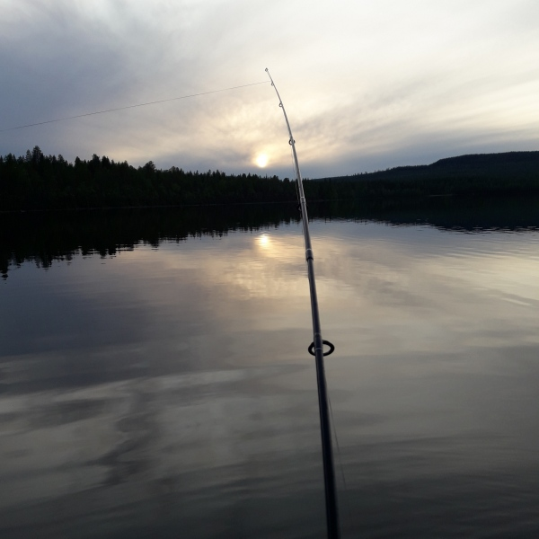 séjour de pêche en Laponie, Suède