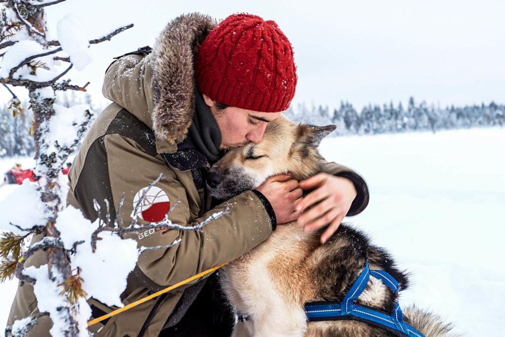 Pause câlin avec chien de traîneau en Laponie Suédoise