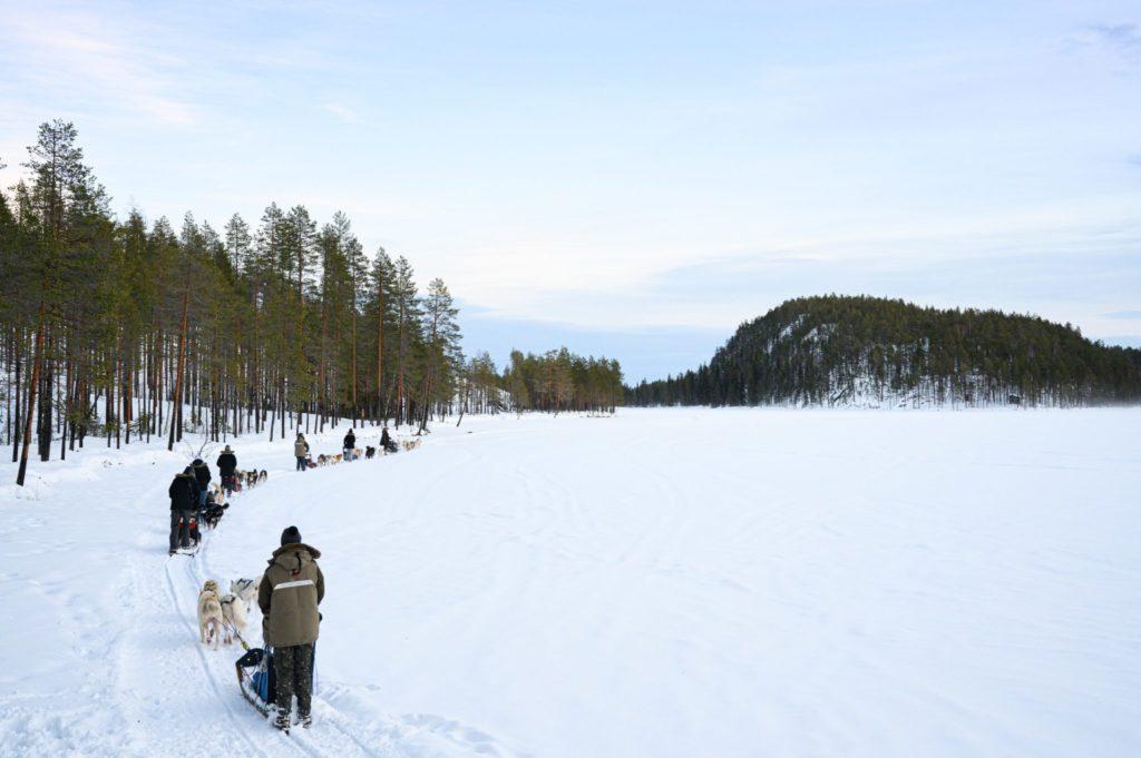 attelages de chiens de traineaux sur un lac gelé en Laponie suédoise