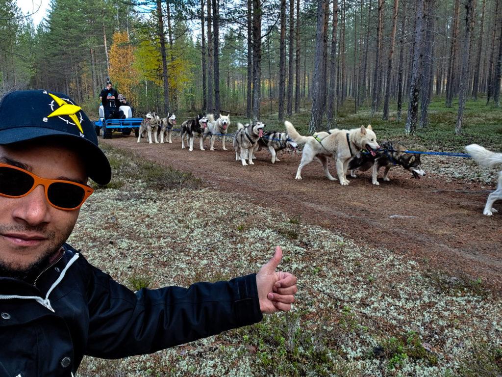 Tour en kart avec des chiens de traineaux en laponie suédoise