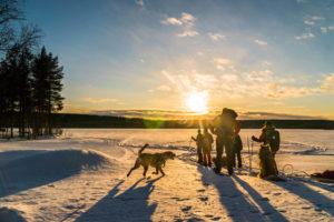 Equipement pour le ski altai