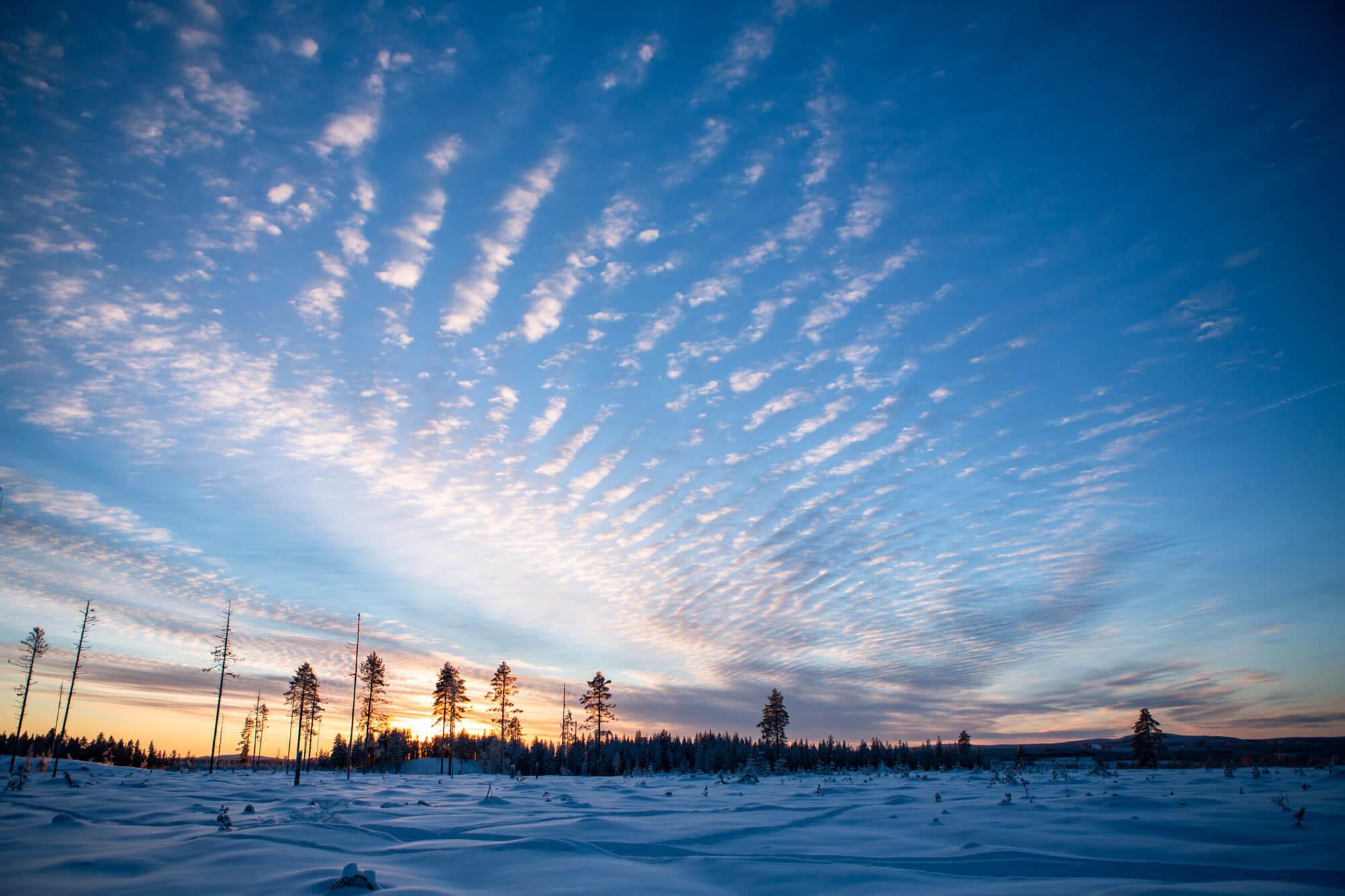 Winter sunset in Swedish Lapland
