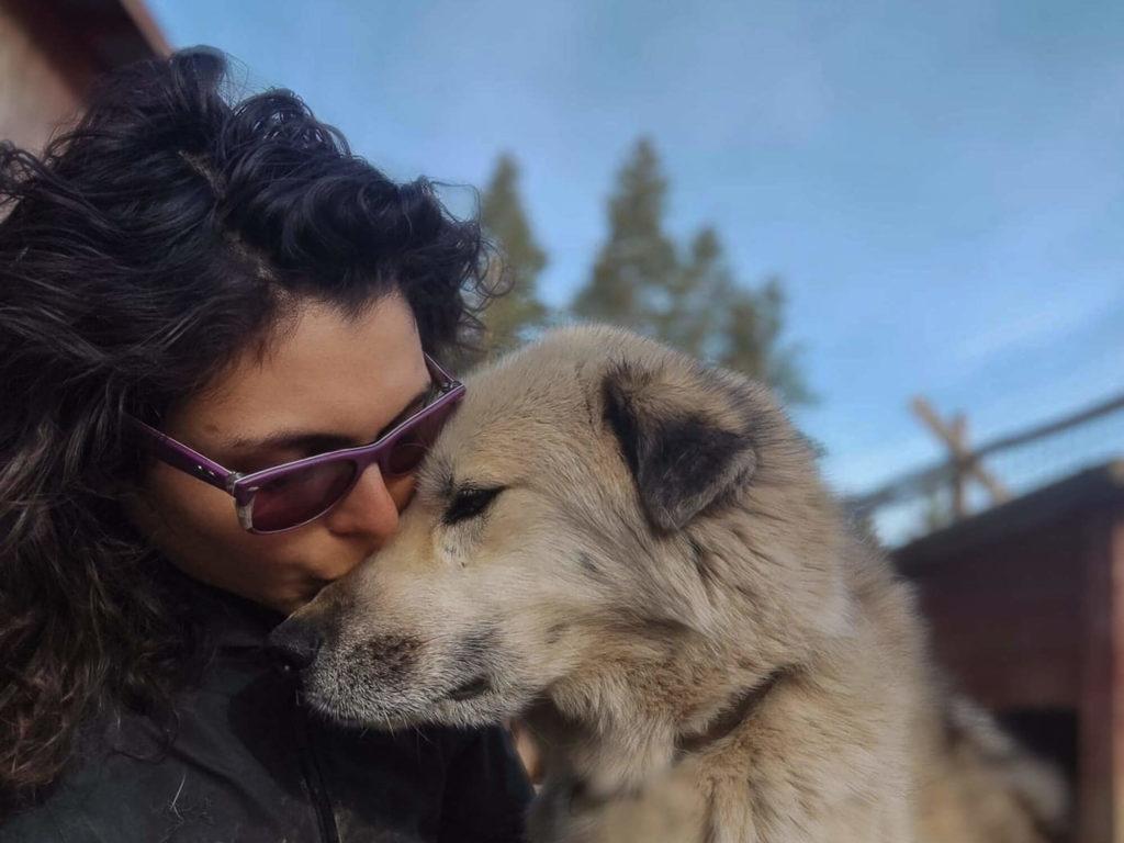 Kayak, l'un des chiens dont Laura s'occupe