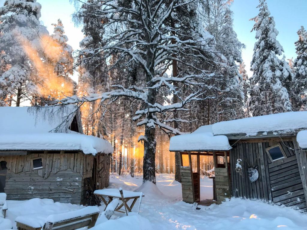 Lumière de neige en Laponie